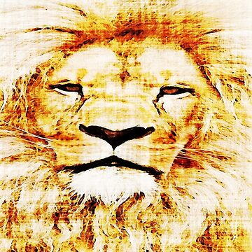 King of The Jungle Lion by Deestylistic