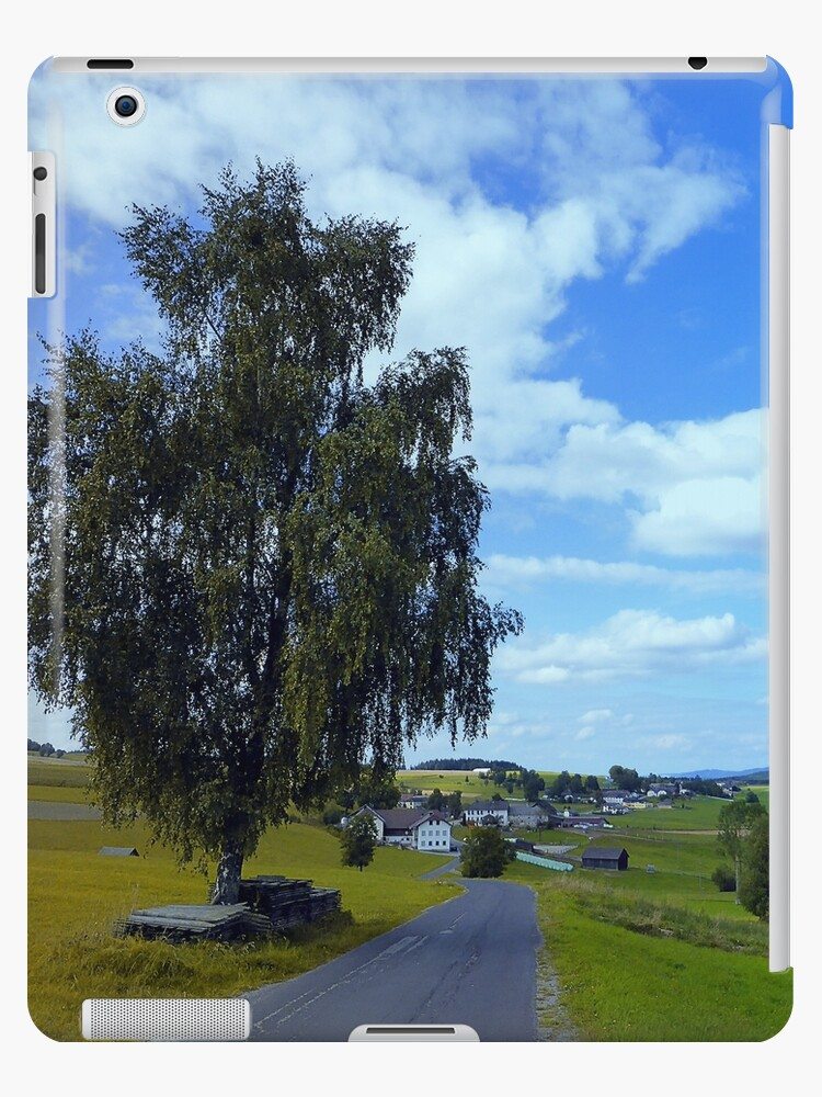 Old tree, country road and a cloudy sky   landscape photography by Patrick Jobst