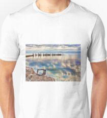 Salton Sea T-Shirt