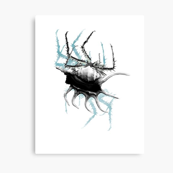 Blue Crab Canvas Print