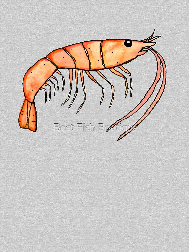 Prawn: Fish of Portugal by BestFish
