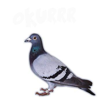 Pigeon Birdgeologist Bird Lover T-shirt by RadTechdesigns