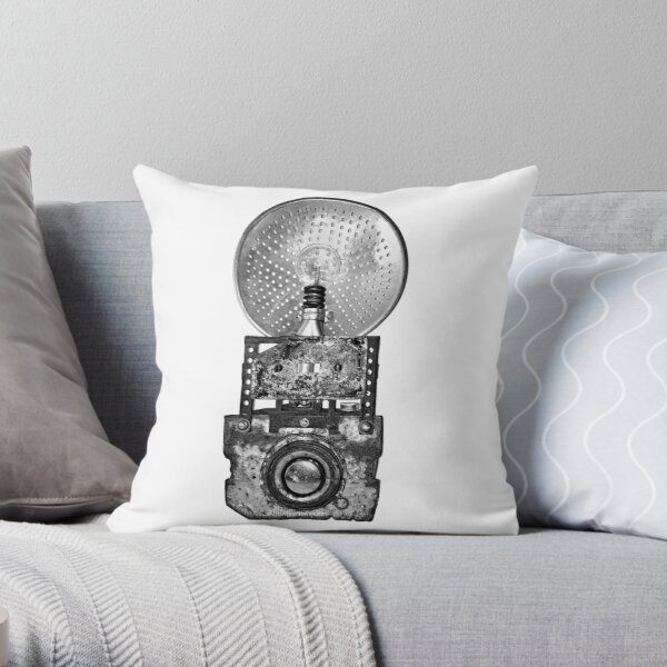 The Brownie Camera Throw Pillow