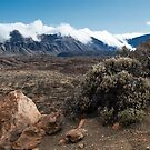 El Teide: Rolling Clouds into the Caldera by Kasia-D