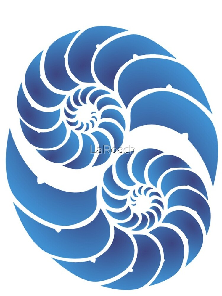 Twin Nautilus Shells by LaRoach