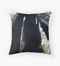 Looking through a Giant Tingle tree Throw Pillow