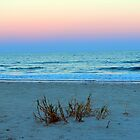 Seaside Sunset by Cynthia48