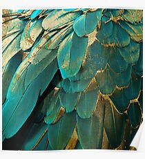 Feather Glitter Teal and Gold Poster