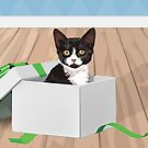 I'm a Gift :: Cat in the Box by greymountpress