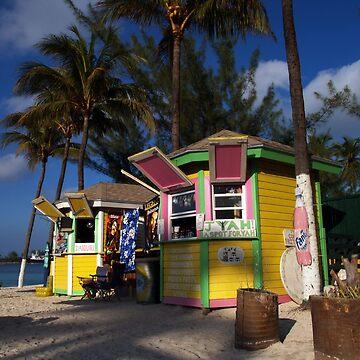 Caribbean house by erozzz