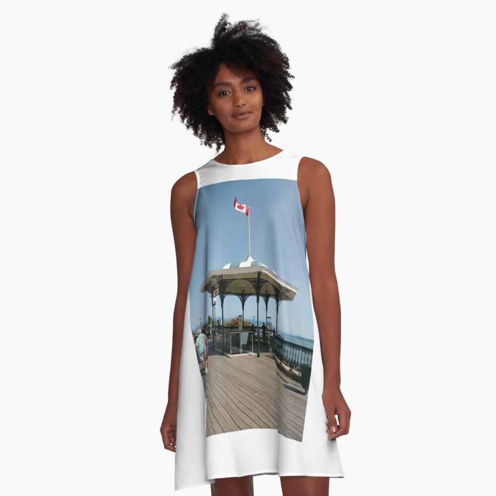 gazebo, pavilion structure, Ancient, #Ancient, #winged, #Babylonian, #lions, #WingedBabylonianLions, #AncientBabylonianLions, #AncientLions, #gazebo, #PavilionStructure, #gazebo, #pavilion, #structure A-Line Dress