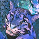 clouded leopard by HoodedYouth