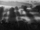 """Casting Shadows""..b/w by debsphotos"