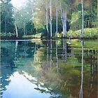 "Original Painting: ""Moments of Reflection"" - Maroochy Bushland Botanic Gardens, Tanawha, QLD, Australia by Martin Lomé"