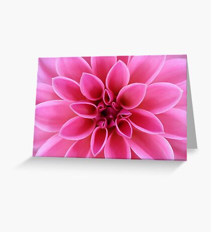 Gorgeous Pink Dahlia Flower Greeting Card