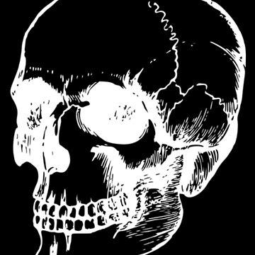 white skull by PaulS34