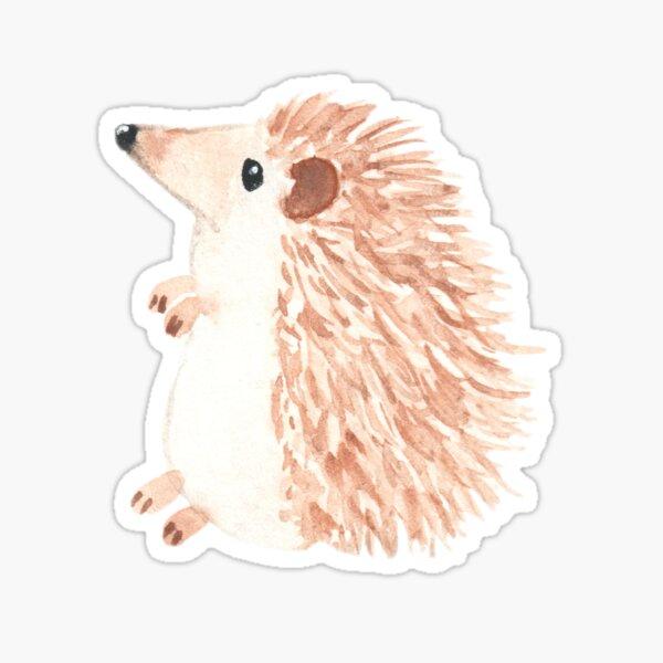 Hedgehog cute original watercolor painting Sticker