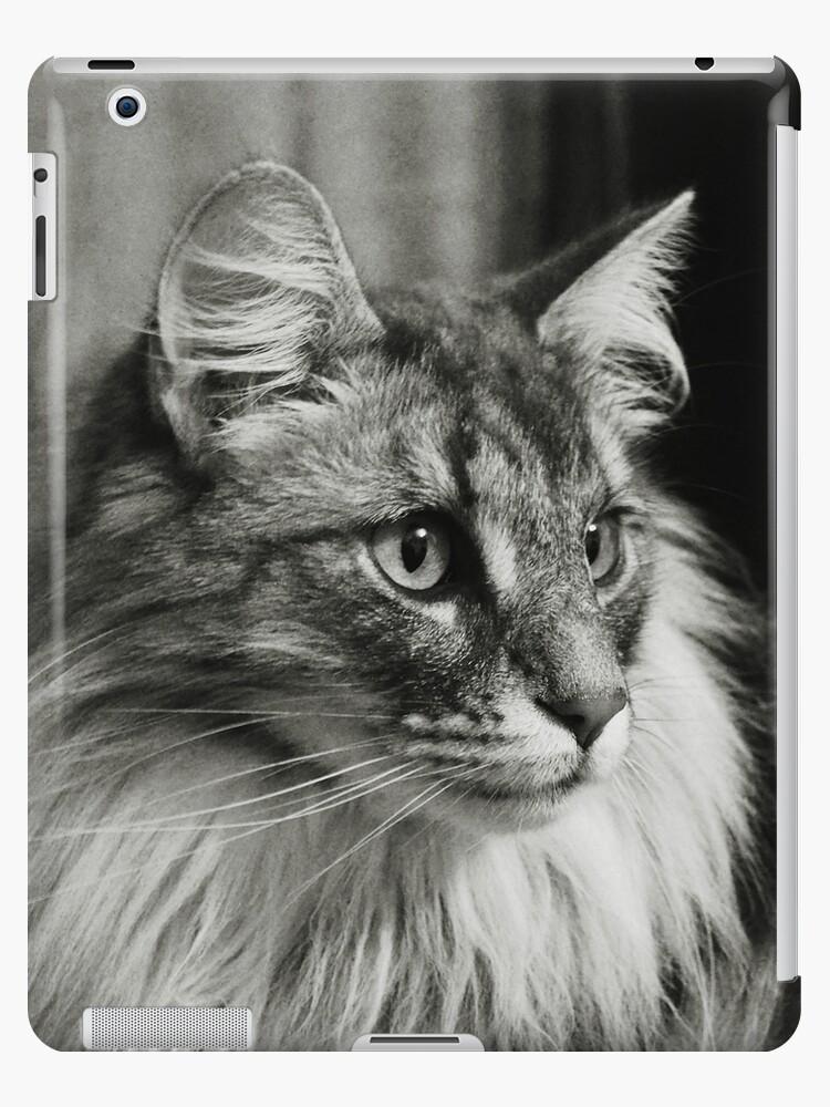 Norwegian Forest Cat Mono iPad Case by Carol Bleasdale