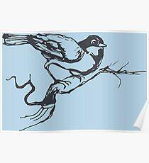Bird Song Spring Time Poster