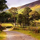 Celtic Spirit. Wicklow Mountains. Ireland by JennyRainbow