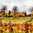 castle ashby grounds by cynthiab