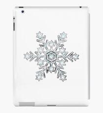 Sparkly Silver glitter snowflake iPad Case/Skin