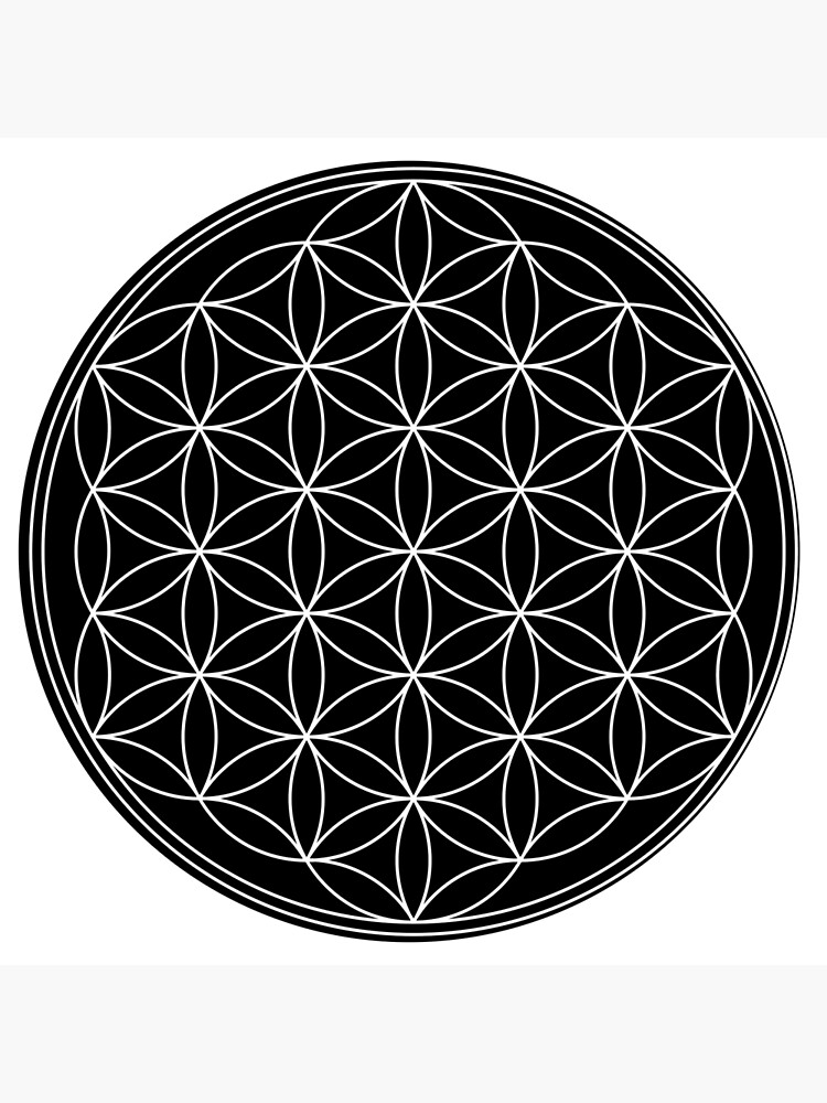 Flower of Life by rupertrussell