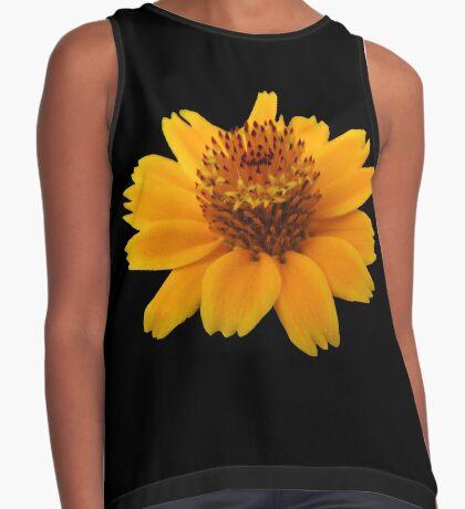 zauberhafte orange Blume, Blüte Kontrast Top