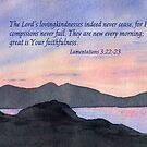 Faithfulness - Lamentations 3:22-23 by Diane Hall