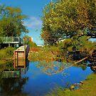 Sturgeon Creek by Larry Trupp
