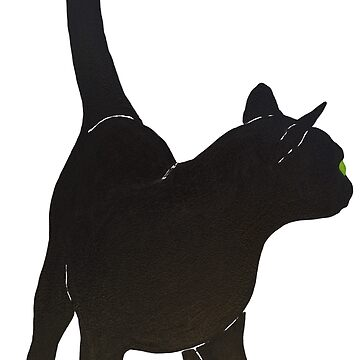 Black Kitty Cat by MatsonArtDesign