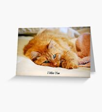 I Miss You, Maine Coon Cat Greeting Card
