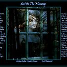 Lost In The Memory... by Amber Elizabeth Fromm Donais