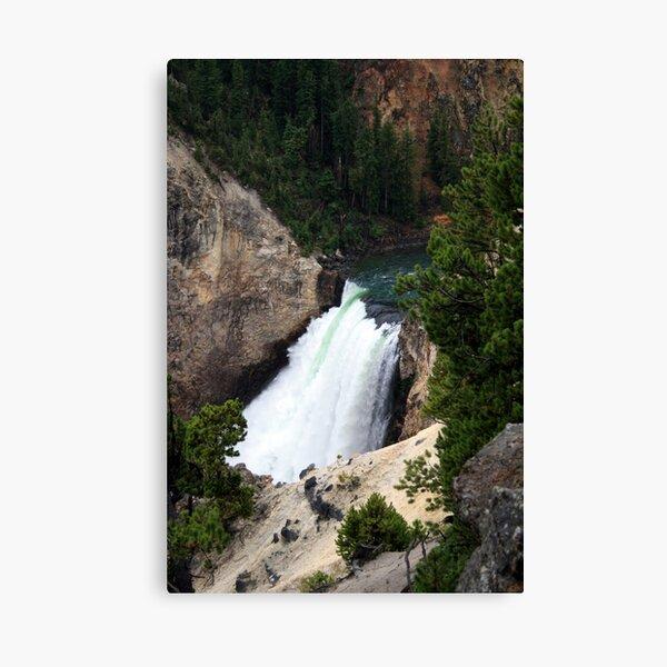 Lower Falls, Yellowstone Canvas Print