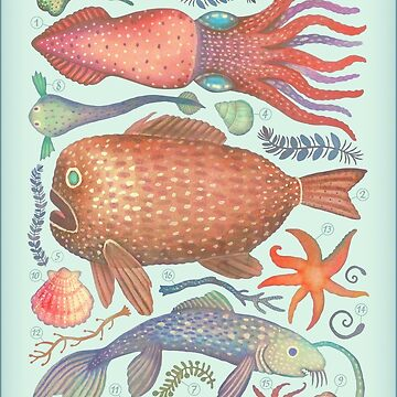 Marine Creatures I by vladimirsart