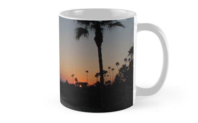 Laguna Beach Sunset by David Shaw