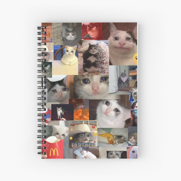 Crying Cat Meme Gifts & Merchandise