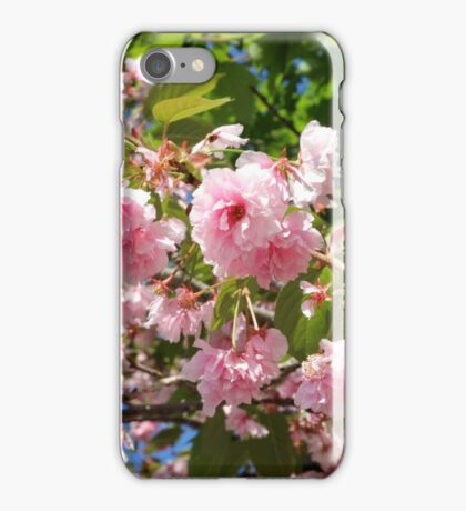 Boston Flowers iPhone Case/Skin