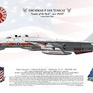 F-14A Tomcat US Navy FS1 162597 1987 by artbyedo
