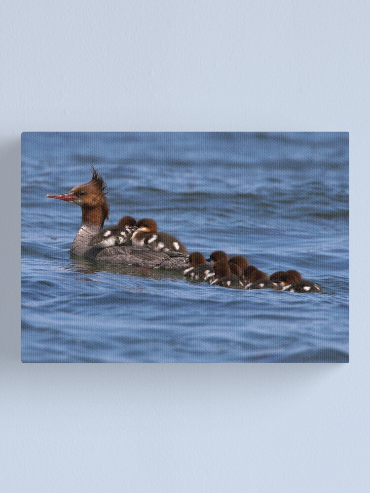 Alternate view of Hitching a Ride Canvas Print