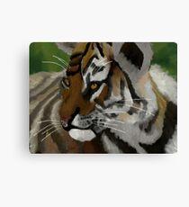 Tiger Cub Canvas Print