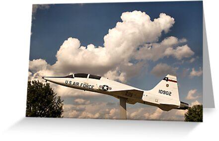 T-38 Talon by Donna Adamski