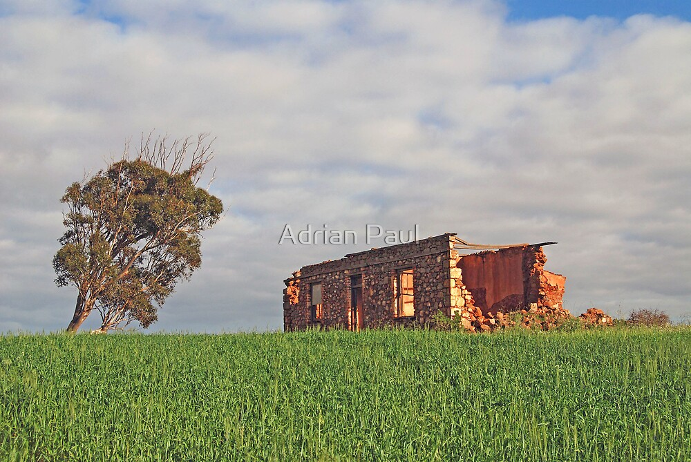 The Old Farmhouse, near Northhampton, Western Australia by Adrian Paul
