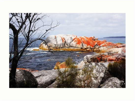 Elephant Rock - Bay of Fires by Lexa Harpell