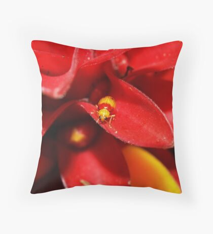 Red and Yellow bug Throw Pillow