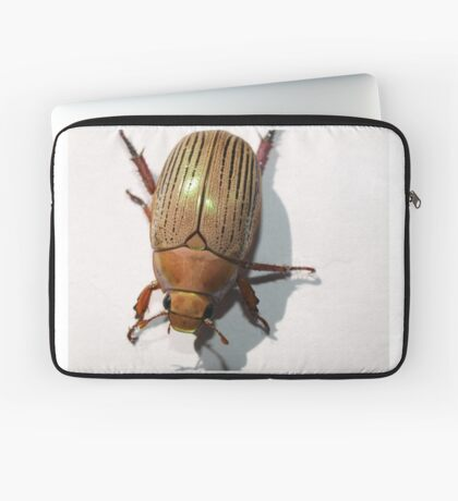 Christmas Beetle Laptop Sleeve