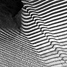 Bench Shadows (Worldwide Photowalk) by CarolM