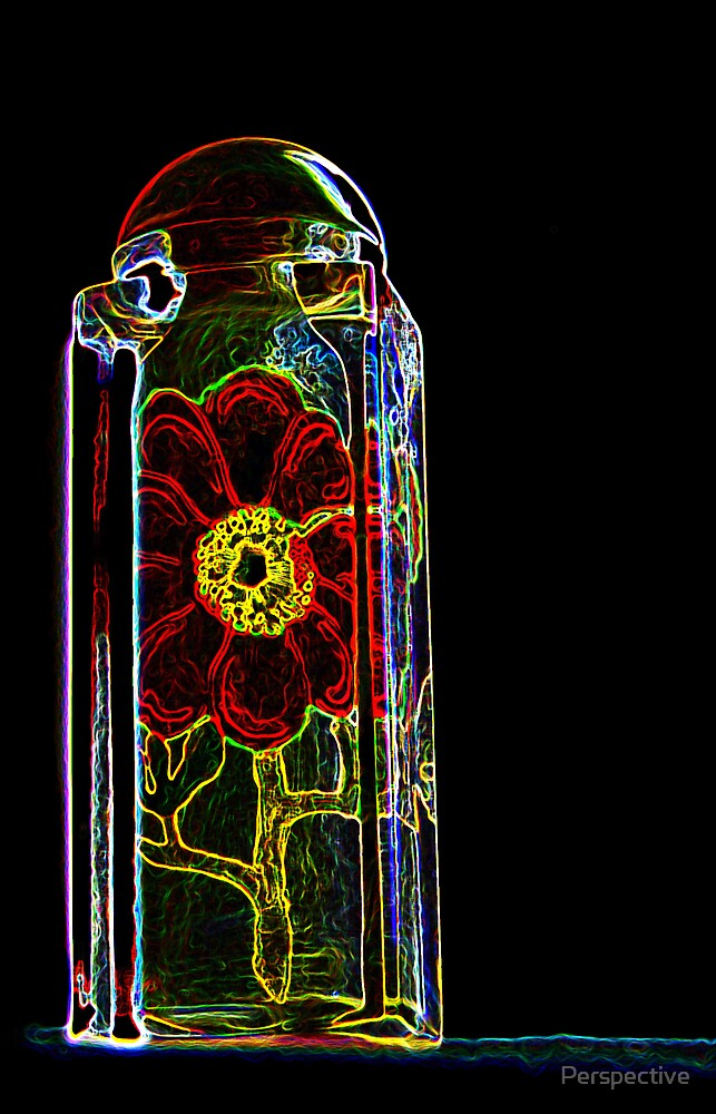 Rose in a Bottle by Perspective