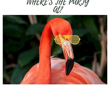 Where's the Party At? Flamingo tshirt by cooltdesigns