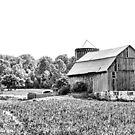 Family Farm by Deborah Downes